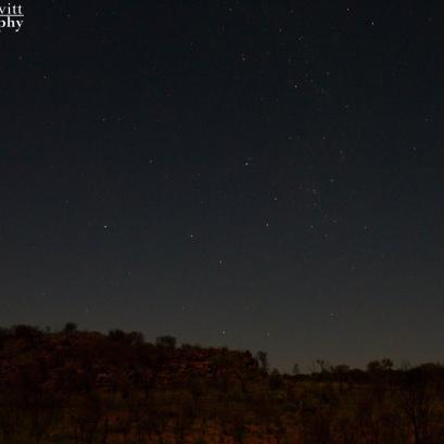 A starry night in the outback